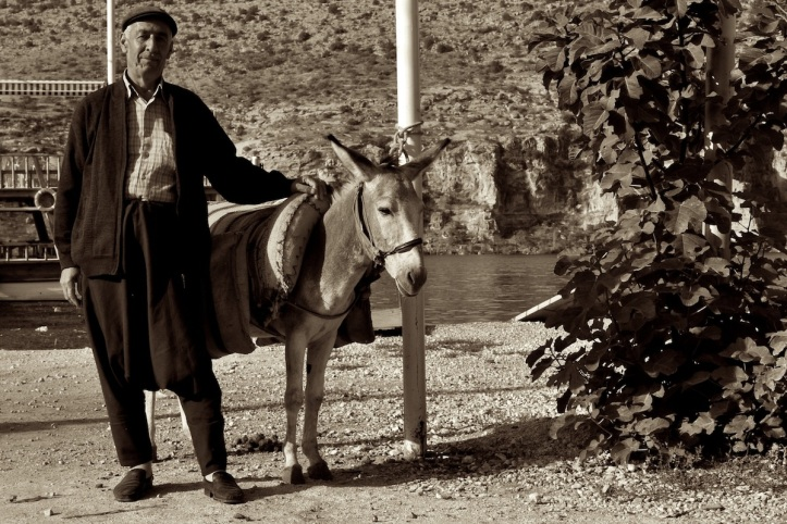 Man With Donkey
