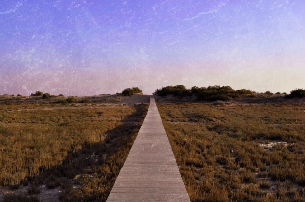 The Way To New Horizons