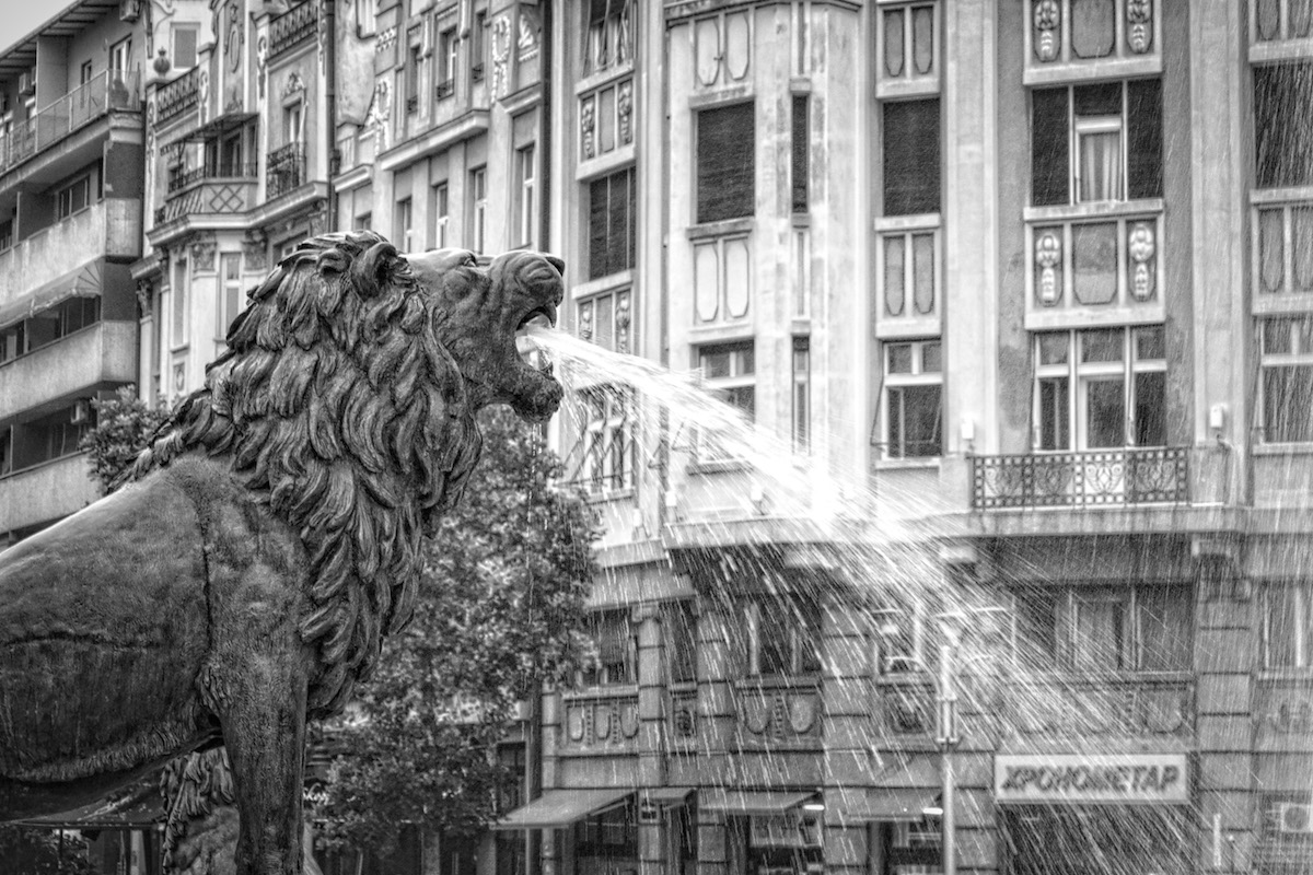 Water From The Lion's Mouth