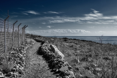 Between The Fence And The Sea