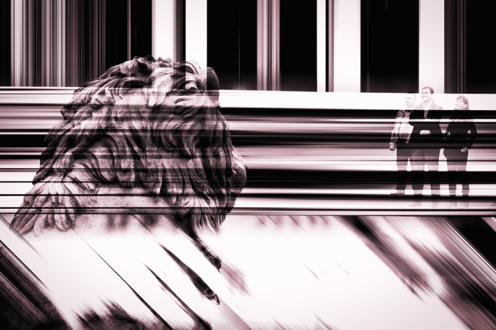 Under The Spell Of The Marble Lion