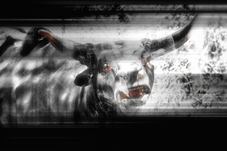 The Vicotry Of The Bull