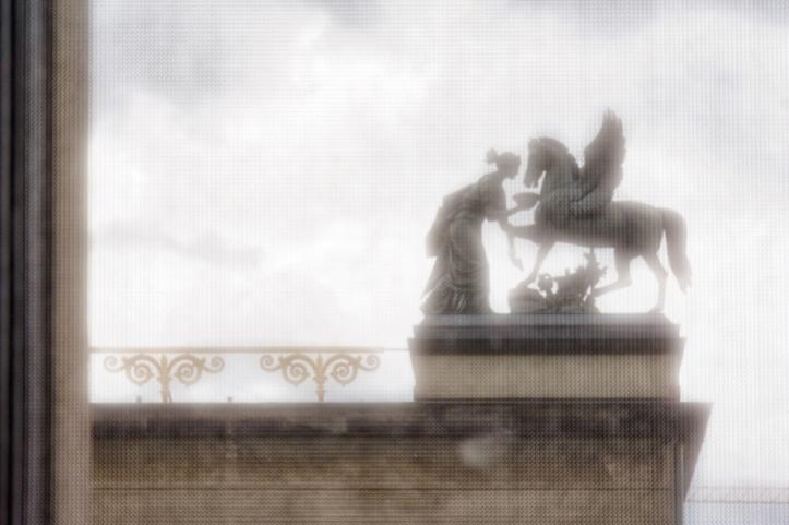 Feeding Pegasus
