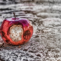 The Red Side Of The Apple