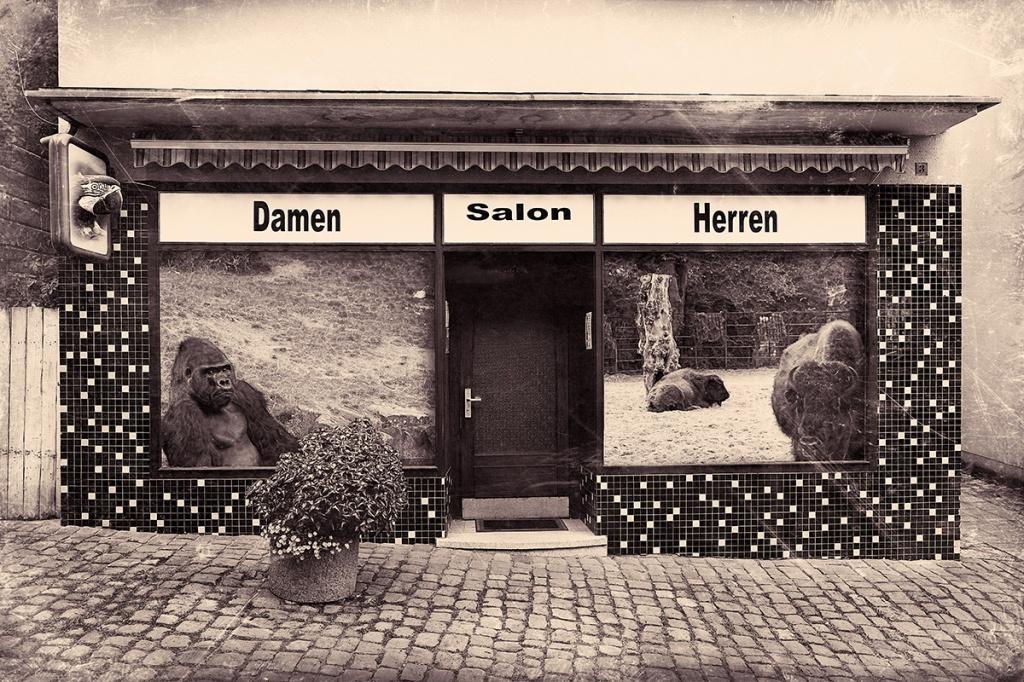 Damen Salon Herren