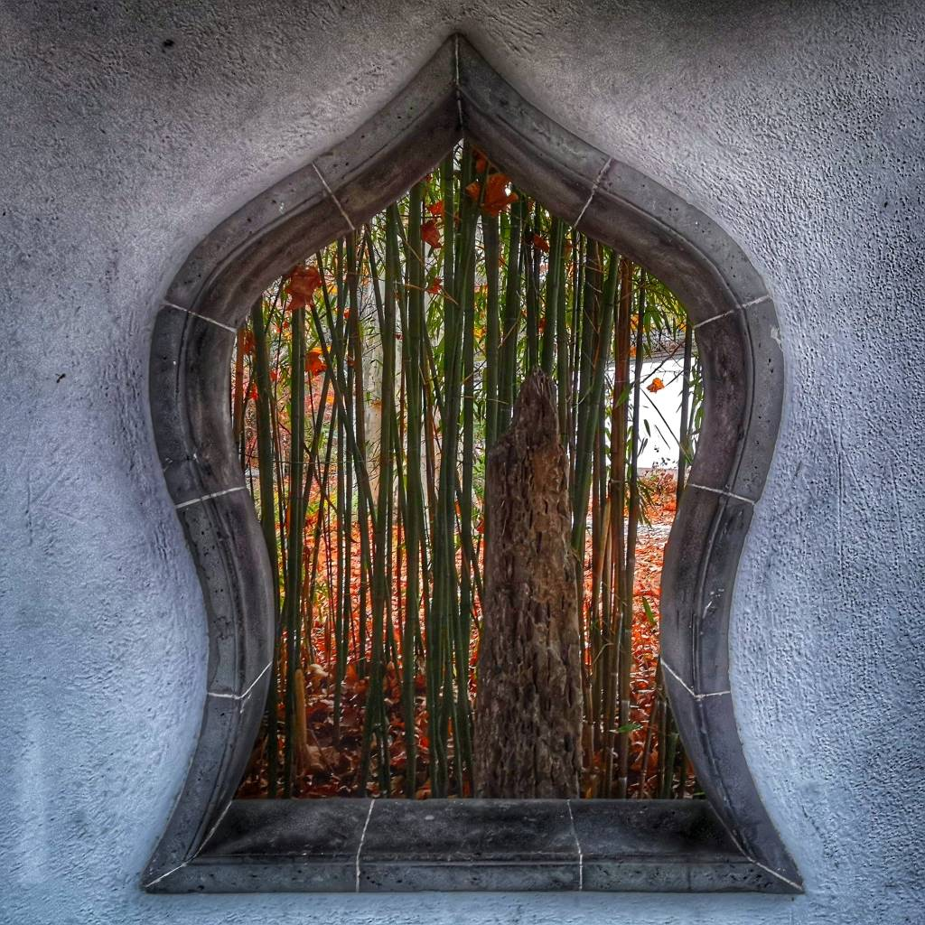 Looking through a window.